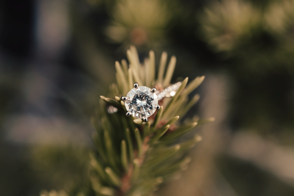 Wedding ring details from Colorado elopement