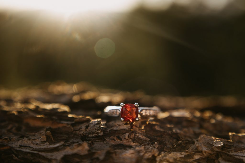 Close up image of Elise's beautiful Ruby engagement ring sitting on a wooden fence during sunset at Lost Gulch Overlook